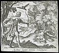 Apollo Killing Coronis LACMA 65.37.100.jpg
