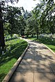 Arlington National Cemetery - looking E down Custis Walk in Section 30 - 2011.jpg