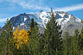 Aspens and Lassen Peak (9167724525).jpg