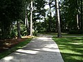 Azalea City Trail 28.jpg