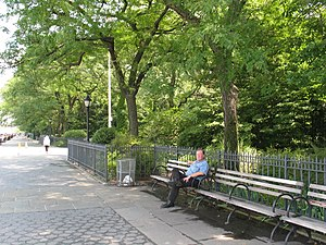 Brooklyn Heights Promenade - A man sitting on a bench on the Promenade