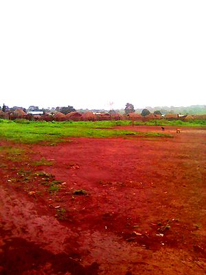 Babongo, Adamawa - Image: Babongo