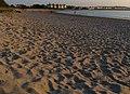 Ballyholme beach (5) - geograph.org.uk - 802572.jpg