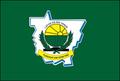 Bandeira de LRV.PNG