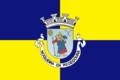 Bandeira de Nogueira da Regedoura 2.png