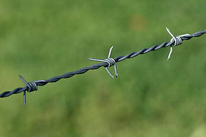 Fence - Typical agricultural barbed wire fencing.