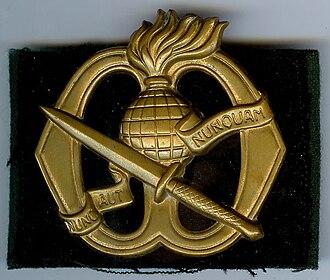 Korps Commandotroepen - Image: Baretembleem Commandos