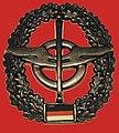 Barettabzeichen Nachschubtruppe Bw.jpg