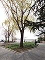 Battery Park City Esplanade 2.jpg