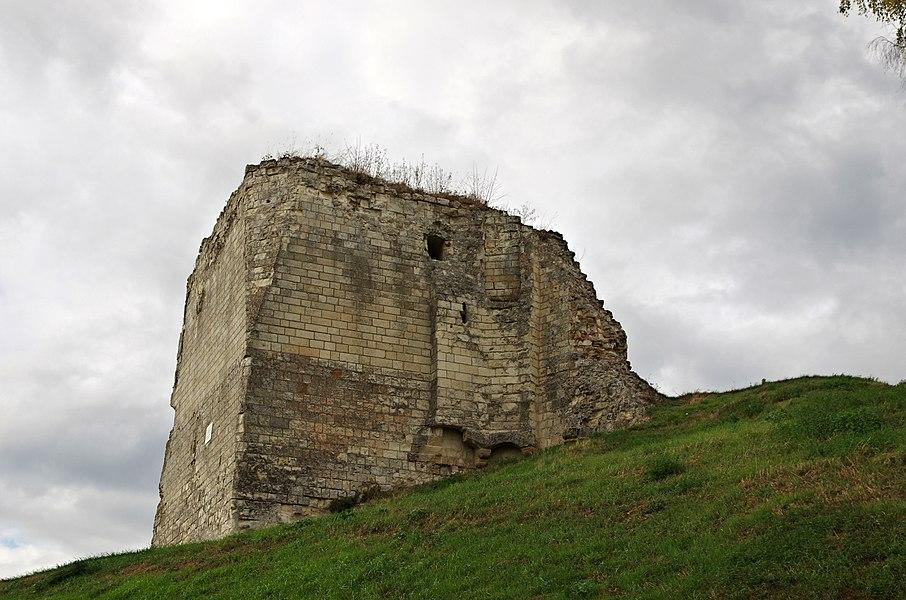 Beaufort-en-Vallée (Maine-et-Loire).   Château de Beaufort en Vallée (à partir du XIe siècle).  La tour sud et ses latrines. On voit encore les évacuations sur le côté de la tour.   On distingue trois sortes de latrines:  - Les latrines dans l'épaisseur du mur dont le conduit mène à une fosse.  - Les latrines dans l'épaisseur du mur dont le conduit en biais débouche sur le parement extérieur. C'est le cas ici, les conduits débouchent à l'extérieur de la tour par deux arcades. Les conduits correspondent chacun à un niveau, le niveau public et le niveau noble (aula).Ce genre de latrines a pu persister jusqu'au XIIIe siècle. Le conduit normalerment en biais, pouvait parfois être pratiquement vertical, en fonction de l'emplacement des latrines.   - Les latrines en encorbellement sur le mur.   Château de Beaufort en Vallée.  L'origine de Beaufort-en-Vallée se situe au lieu-dit St Pierre du Lac, ancienne cité lacustre.  Vers 1230, les auteurs du Lancelot en prose (XIIIe siècle), situent à Beaufort-en-Vallée la colline où meurt Ban de Benoïc, le père de Lancelot, ainsi que le Lac de la fée Viviane.  Saint-Pierre-du-Lac, à Beaufort-en-Vallée, est désigné comme le lieu où Viviane a élevé Lancelot.  Le village s'est ensuite déplacé vers la butte, ancien oppidum gallo-romain. Cette situation stratégique permit la construction, à partir du XIème siècle, de ce château fort.  En 1347, Guillaume Roger, seigneur limousin, frère du pape Clément VI, devient le premier comte de Beaufort. Il mettra dix ans pour reconstruire le château ruiné (1356).   Pendant la guerre de cent ans, le château est investi par les Anglais puis repris par Duguesclin et le seigneur de Maillé.  Au milieu du XVème siècle, Jeanne de Laval épouse du Bon Roi René (René Ier d'Anjou), complète le château d'une nouvelle tour octogonale (1459).  Après la mort du roi René le 10 juillet 1480, Jeanne se retira dans le château de Beaufort où elle passa les 18 dernières années de sa vie. Elle y mourut le 2 janvier 1498. 