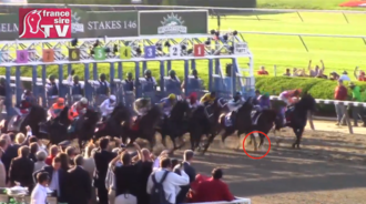 Konie opuszczające bramę startową Belmont Park na początku wyścigu konnego