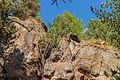 Bergtocht van parkeerplaats bij centrale Malga Mare naar Lago Lungo. Loodrechte rotswand naast het bergpad 02.jpg