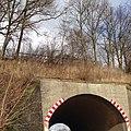 Berkenthin Kaiserbahn ungenutzte Brücke 2014-02-16 7.JPG