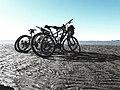 Bicicletas en el mar.jpg