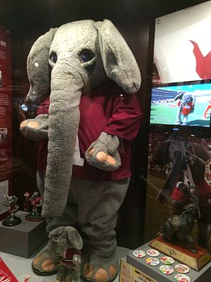 "Big Al (mascot) - One of the earlier ""Big Al"" costumes on display at the Paul W. Bryant Museum in Tuscaloosa"