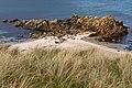 Bigton Wick, Shetland (47445724662).jpg