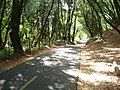 Bike path in San Bruno Mountains (10376523694).jpg