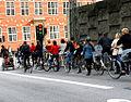 Bikecultureincopenhagen.jpg