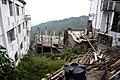 BirG072-Dharamsala.jpg