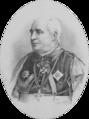 Bischof Hof- und Burgpfarrer Dr. Laurenz Mayer 1899 Th. Mayerhofer.png