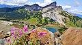 Black Tusk Mountain with Fireweed.jpg