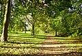 Bluebell Walk Abbots Farm Rugby - geograph.org.uk - 268842.jpg