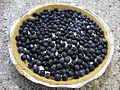 Blueberry pie, July 2009.jpg