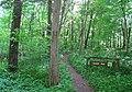 Bowman's Hill Wildflower Preserve - IMG 8306.JPG
