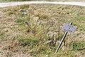 Bretagne - Finistère - de Plouescat à Cléder - Four à Goémon - 001.jpg