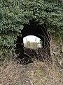 Bridge or Tunnel - geograph.org.uk - 1106938.jpg