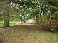 Bridlepath at Moss Villa - geograph.org.uk - 594948.jpg