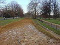 Bridleway in Hyde Park - geograph.org.uk - 654518.jpg
