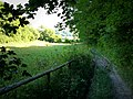Bridleway to Ashford Hanger - geograph.org.uk - 955589.jpg