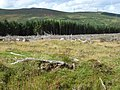 Bronze age burial cairn, near the Aber Falls - geograph.org.uk - 226663.jpg