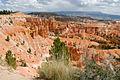 Bryce Canyon, near Sunset Point (3680194612).jpg