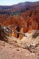 Bryce Canyon Parc-National en2016 (18).JPG