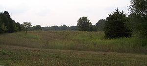 Vincennes Trace - Buffalo Trace near Palmyra, Indiana overgrown and barely distinguishable