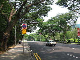 Bukit Timah Road - Dunearn Road, eastbound towards the city.