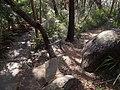 Bullimah Spur - panoramio.jpg