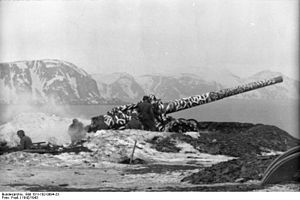 Operation Platinum Fox - German coastal artillery – German shipping was under constant attack by Soviet-British forces