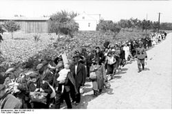 Black and white photo of Polish civilians leaving Warsaw under guard by German soldiers