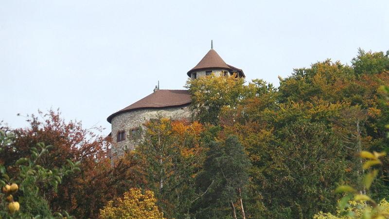 File:Burg Reichenstein Arlesheim.JPG