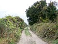 Byway, Wick Down - geograph.org.uk - 1578832.jpg