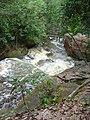 Cachoeira do santuário II - panoramio (1).jpg