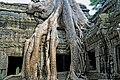 Cambodia-2555 (3608433547).jpg