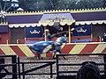 Camelot Theme Park, Jousting 2010.jpg
