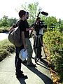 Camerman and director making movie about nature.jpg