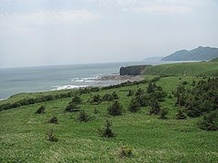 Cape Tihii. Sakhalin coast of Sea of Okhotsk.JPG