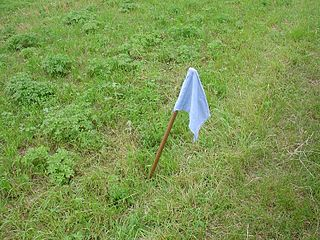Capture the flag traditional outdoor game