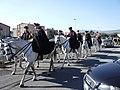 Carabinieri on horses.jpg